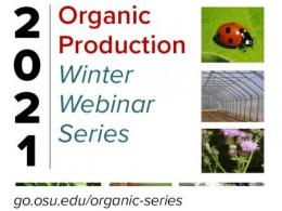 Promo piece for 2021 organic production series with photo of a ladybug, high tunnel, and pink flowers
