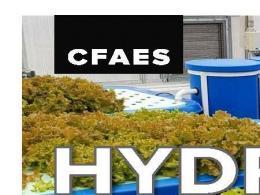 Hydroponics Aquaponics Impacts & Opportunities Flyer