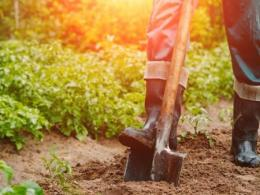 An upcoming workshop by CFAES experts will teach you the hows and whys of soil testing. (Photo: Getty Images.)