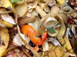 Photo: Getty Images - Food Scraps