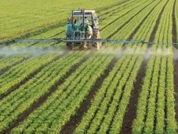 Photo of a field with rows of green crops being sprayed by a tractor with a sprayer. Photo by Thinkstock